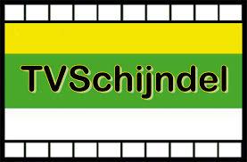 Logo Tv Schijndel